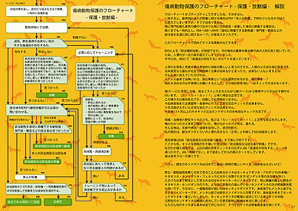 キツネ写真集「キツネ保護観察日誌」 Vol.1