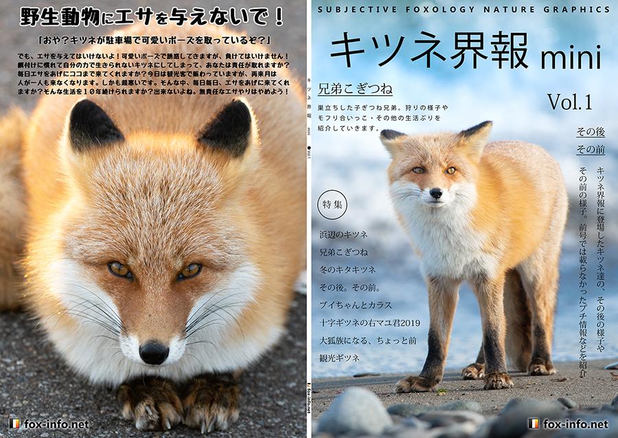 キタキツネ写真集「キツネ界報」mini Vol.1