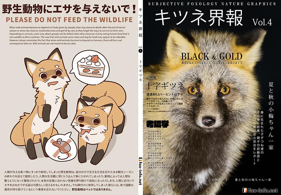 キツネ写真集「キツネ界報」Vol.4