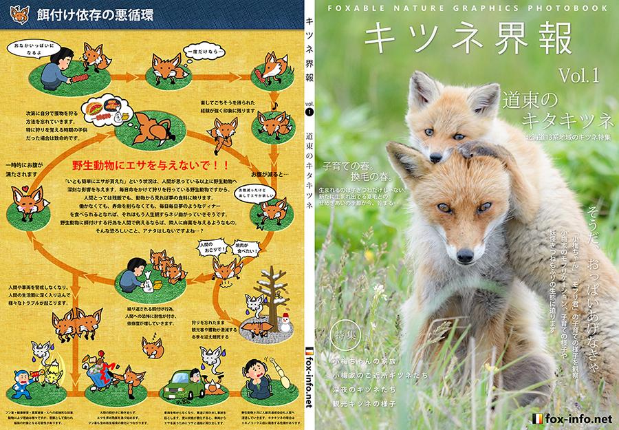 キツネ写真集「キツネ界報」Vol.1