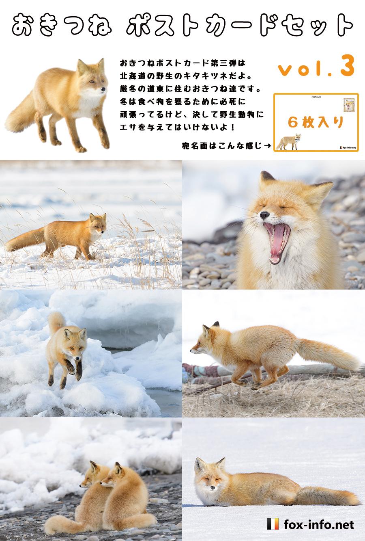 キツネポストカードセット第三弾「野生のキツネ(冬の北海道キタキツネ)」