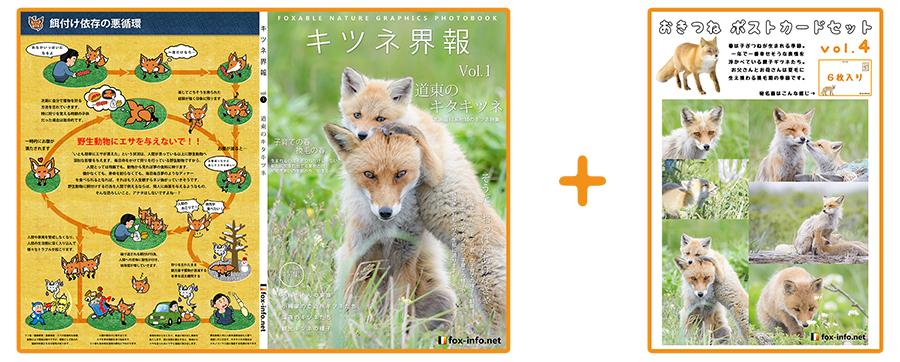 キタキツネ写真集「キツネ界報」Vol.1+キタキツネポストカードセット