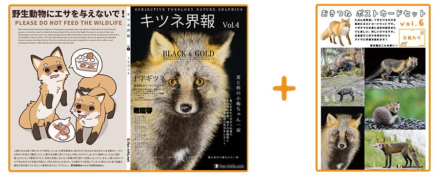 キタキツネ写真集「キツネ界報」Vol.4+キタキツネポストカードセット